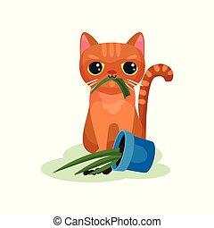 Naughty kitten eating house plant, mischievous cute little...