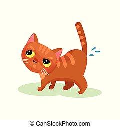 Naughty kitten peeing on the floor, mischievous cute little...