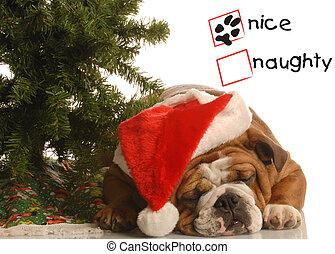 naughty or nice dog - naughty or nice english bulldog ...