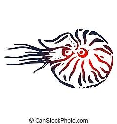 nautilus, ilustración, concha marina