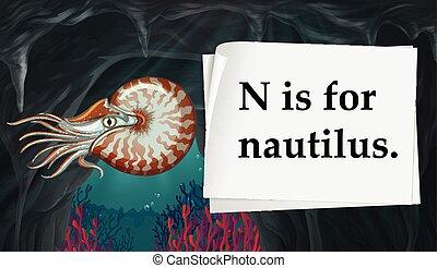 nautilus, lettera n