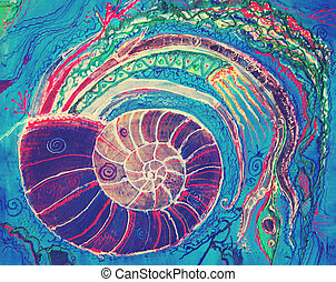 nautilus, -, pompilius, dibujo, mano, molusco, colorido, ...