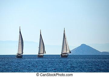 navegación, yates, barco, velas, blanco, fila