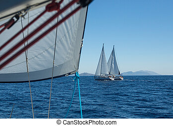 navegación, yates, barco, velas, blanco, row.