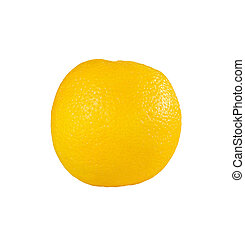Navel orange on white background.