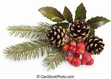 navidad, estacional, frontera, de, acebo, muérdago, sprigs, con, piñasdel pino