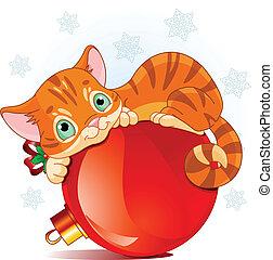 navidad, gatito