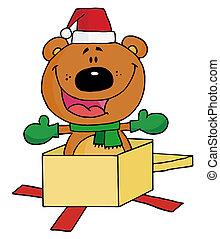 navidad, oso
