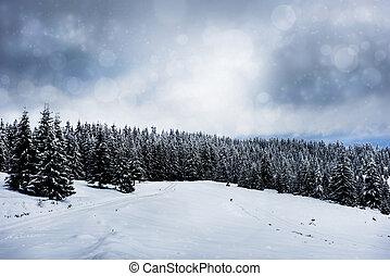 navidad, paisaje de invierno, con, árboles cubiertos de nieve, y, majestuoso, luces