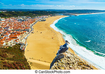 Nazare, Portugal: Panorama of the Nazare town and Atlantic Ocean with seagull bird in the foreground, seen from Nazare Sitio hill