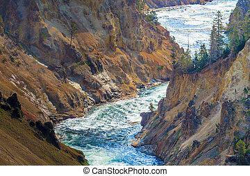nazionale, wyoming, parco, canyon, yellowstone, grande