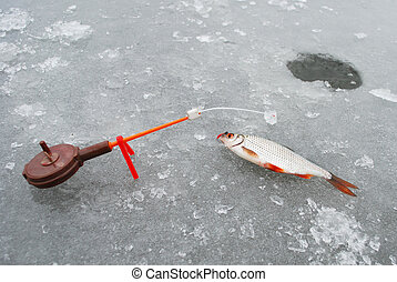 Near the wells winter ice fishing rod worth, and it hangs on a roach.