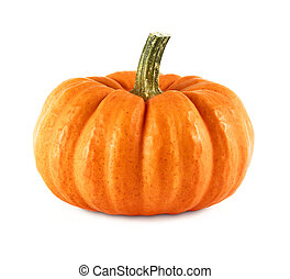 Neat pumpkin on white - Studio shot of a nice ornamental...