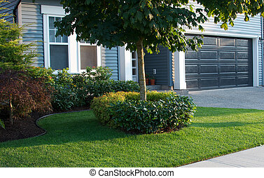Neatly manicured front lawn