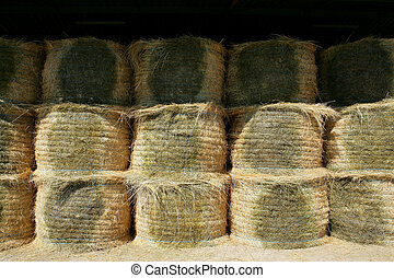 Neatly stacked hay rolls