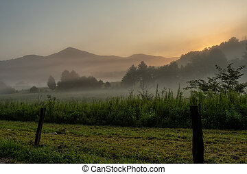 nebbia, e, vecchio, recinto, in, cades, baia