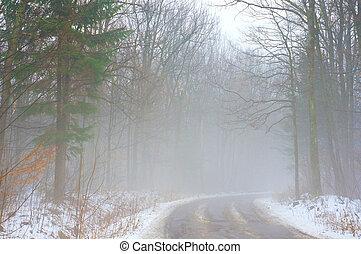nebbia, foresta, strada