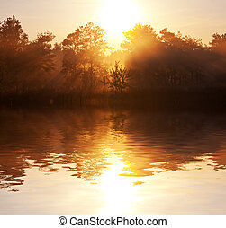 nebbia, in, lago