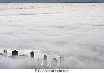 nebbia, oceano, sotto