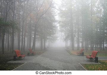 nebbia, parco