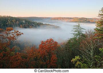 nebbia, pieno, valle