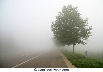 nebbia, scenario