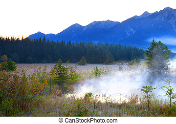 nebbia, sopra, lago, in, alpi