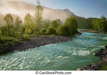 nebbia, su, il, fiume
