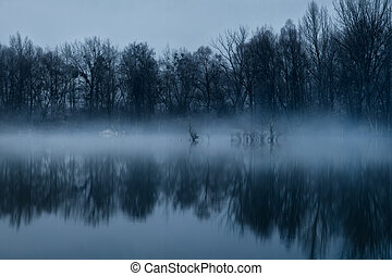 nebbioso, alba, lago