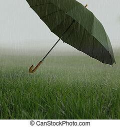 nebbioso, erboso, campo, con, pioggia pesante, e, volare, ombrello