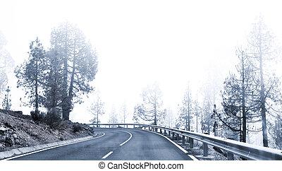 nebbioso, inverno, strada, sinuosità