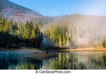 nebbioso, montagnoso, foresta, lago
