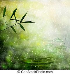 nebbioso, pioggia, in, il, bambù, forest., astratto,...