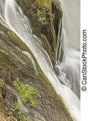 nebbioso, terreno boscoso, cascata