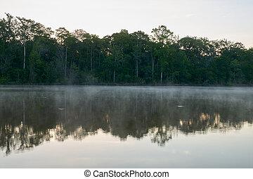 nebel, altamaha, fluß, sonnenaufgang, morgen