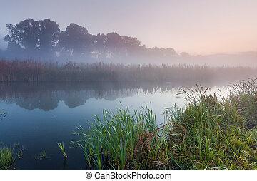 nebel, aus, himmelsgewölbe, morgen, hintergrund, klein, dämmern, fluß