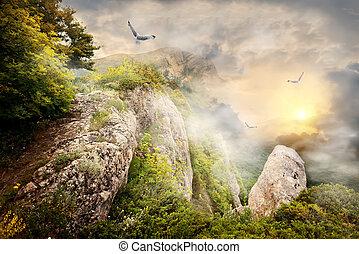 nebel, in, berge