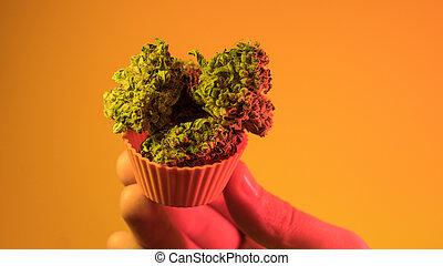 neblina, strains, roxo, kush, og, buds., indica, sativa, melhor, marijuana