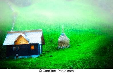 nebuloso, calmo, nevoeiro, colina, fresco, rural