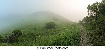 nebuloso, mágico, colinas