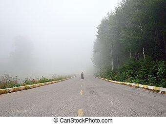 nebuloso, mulher, silueta, nevoeiro