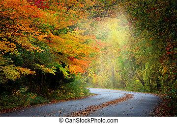 nebuloso, outono, estrada