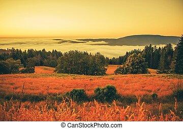 nebuloso, pôr do sol, paisagem