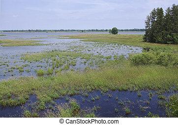 Necedah Wildlife Refuge wetlands in Juneau County of Wisconsin