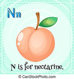 Nectarine - Flashcard letter N is for nectarine