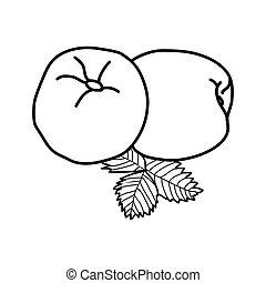Nectarine Fruit Icon. Vector Design Illustration Sign Logo.
