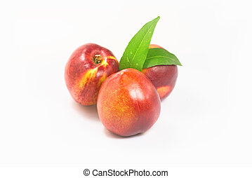 Nectarines on a white background.