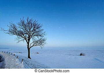 nederland, winterlandschap