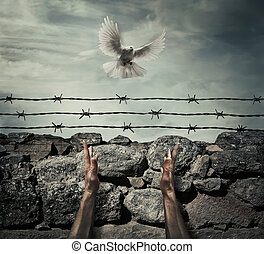need forgiveness - Man arms on a stone wall fence background...