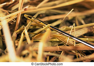 Needle in a haystack - Close-up of a needle in a hay